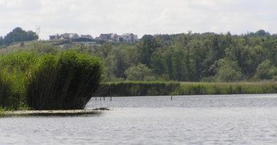 Uniwersytet Szczeciński: groźne bakterie w Odrze