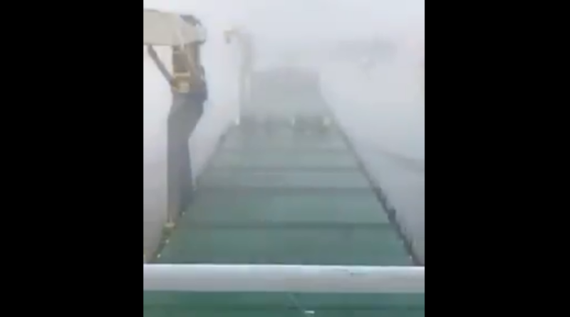 Odra. Poranna mgła w drodze do nabrzeża katowickiego. Z pracy pilota [film].